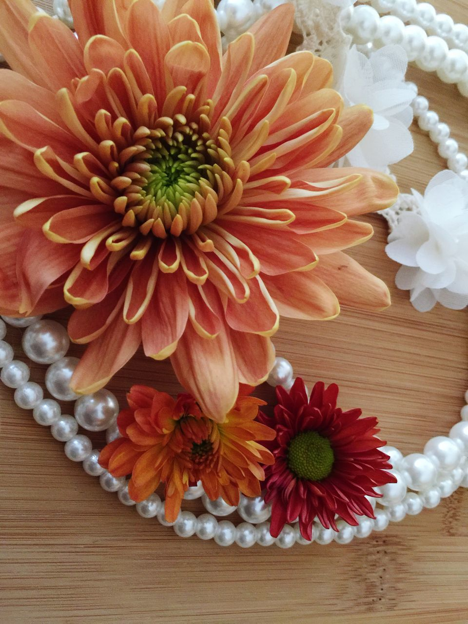 flower, petal, freshness, beauty in nature, flower head, nature, table, no people, fragility, growth, indoors, blooming, close-up, day