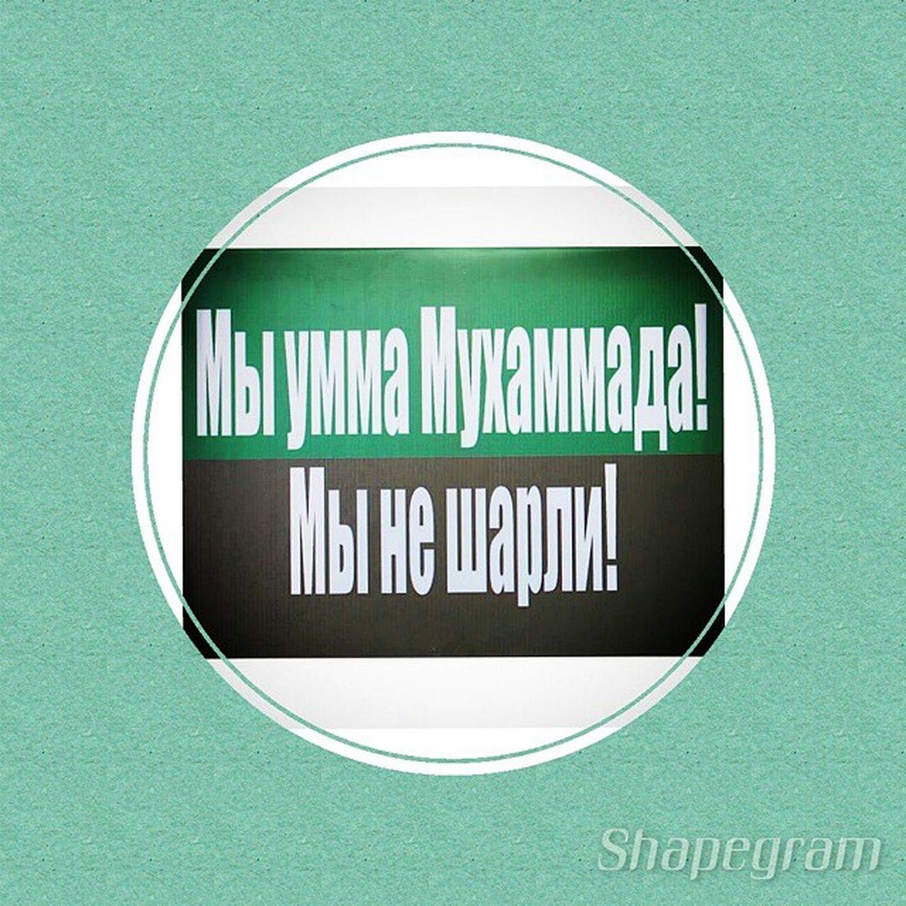 (Made with @shapegram_rc) Shapegram