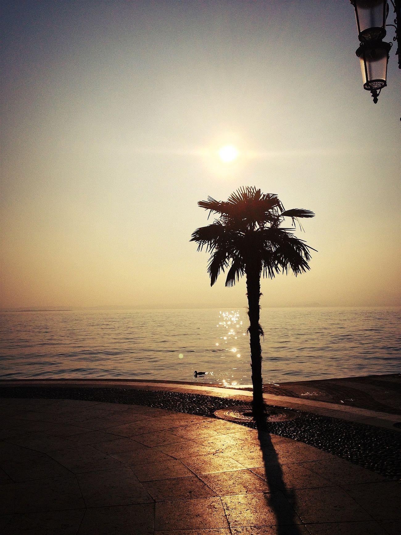Sunset Beautiful Day Sun_collection Eye4photography
