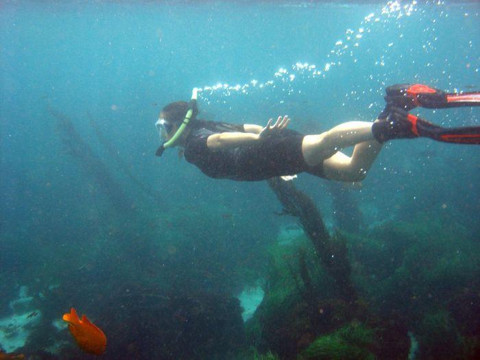 Snorkeling Snorkling Snorkel Diving Girl Under Water