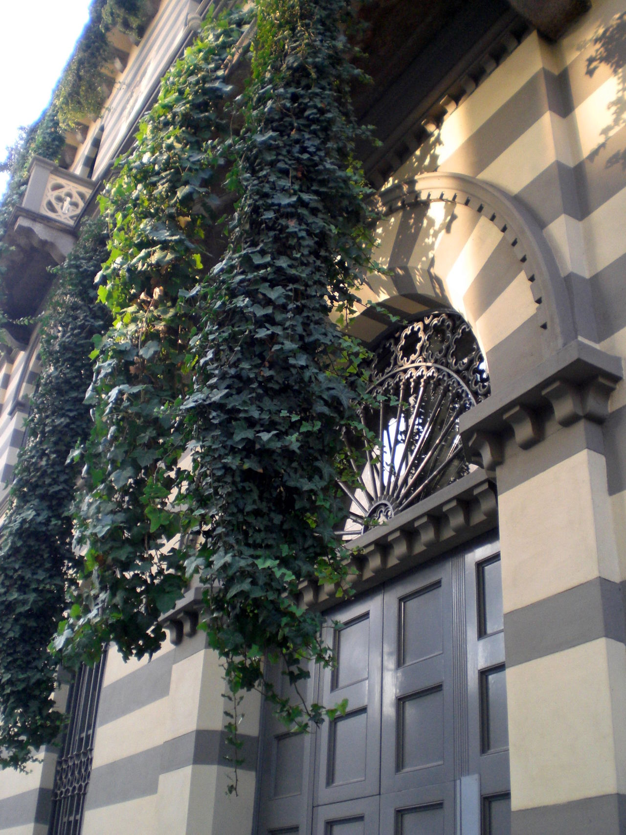 Adapted To The City Balcony Building Exterior Covered Wall Day Doorway Façade Ivy