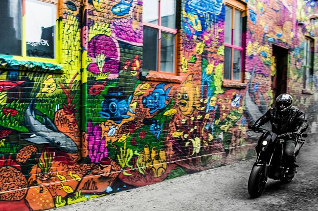Bringer of the grey scale Graffiti Urban Toronto Colorful
