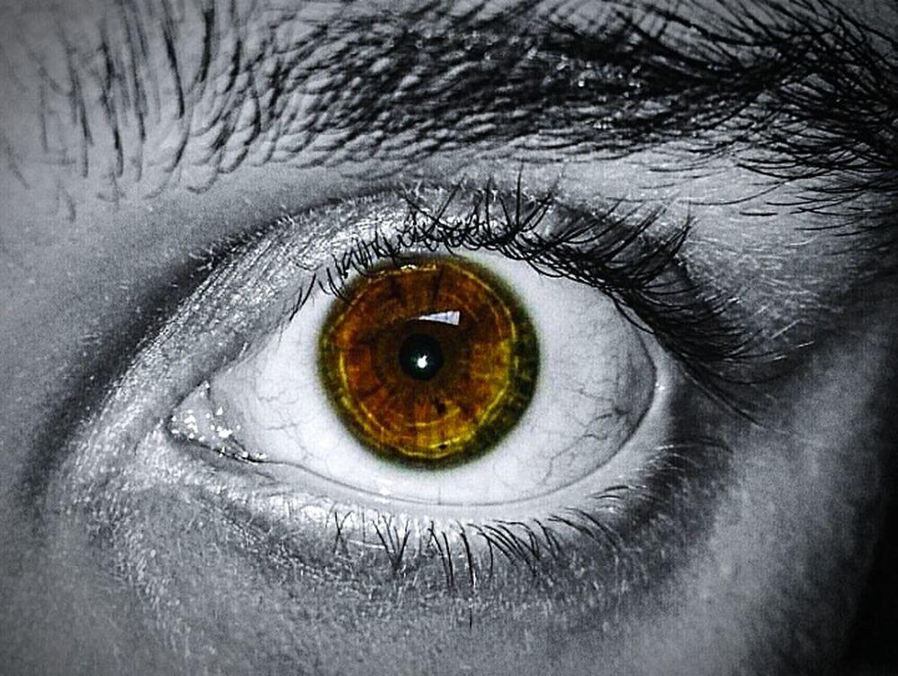 Sight. Neweyeem Eye Blackandwhite Life Careness Frens Watching Inside Lifestyle Neweyeemhere EyeEmNewHere