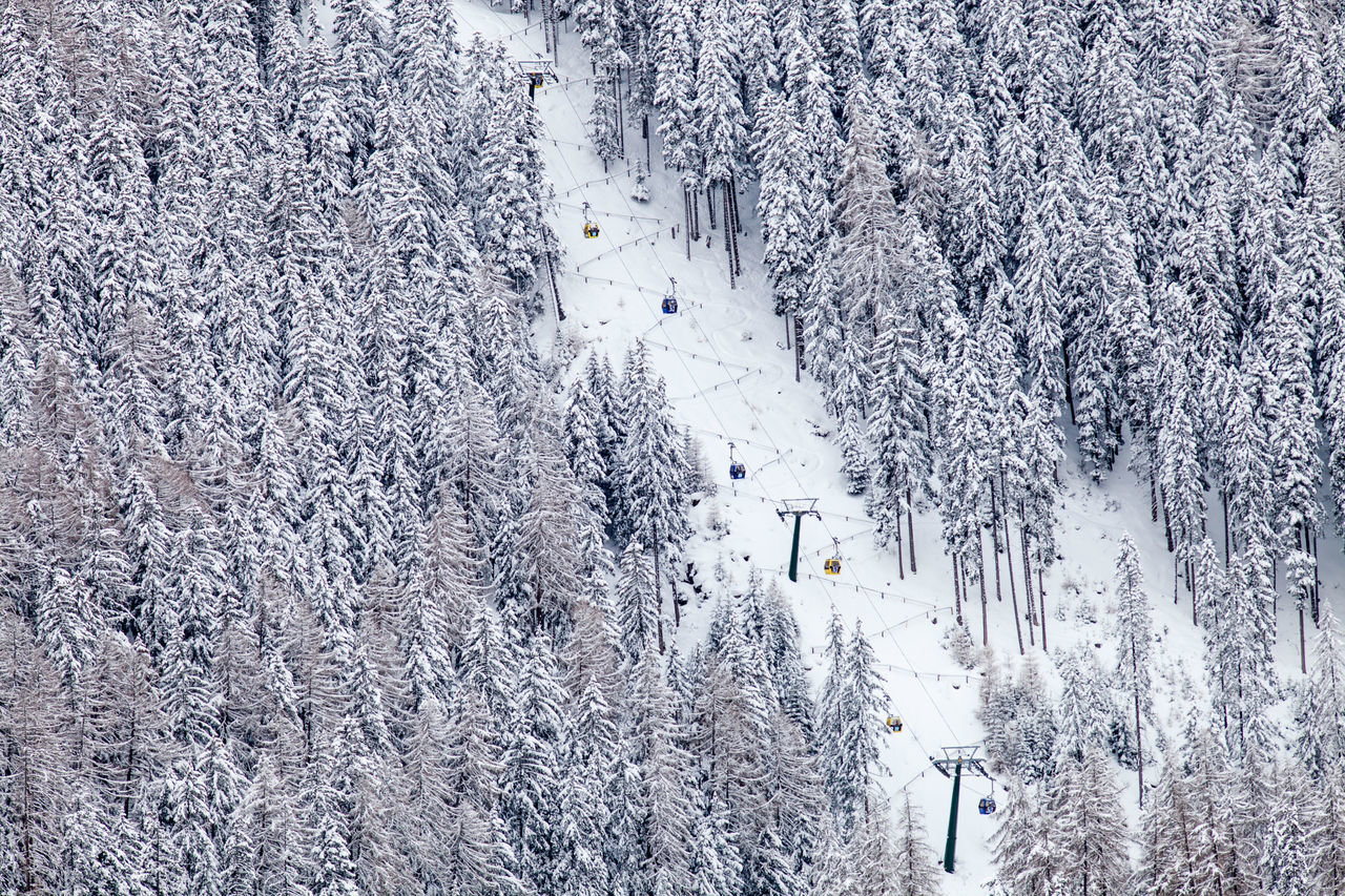 Beauty In Nature Close-up Cold Cold Temperature Day European Alps Frozen Fun Nature No People Outdoors Ski Lift Skiing Snow Snowing Tranquility Transportation Traveling Tree Tree Vacations White Winter Winter Sport Wood