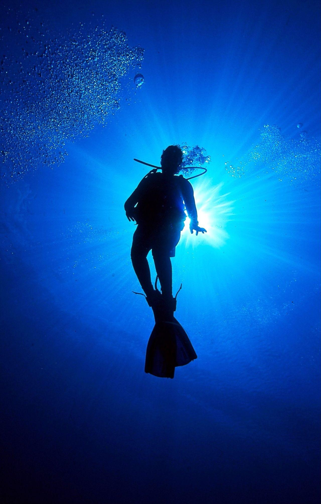 Beautiful stock photos of bahamas, Adventure, Diving Equipment, Exploration, Leisure Activity