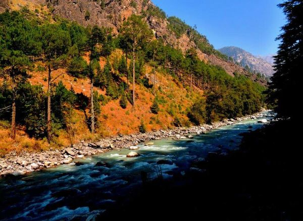 Another view of River Beas. Tranquility Nature Water Stream - Flowing Water Non-urban Scene Forest Beauty In Nature
