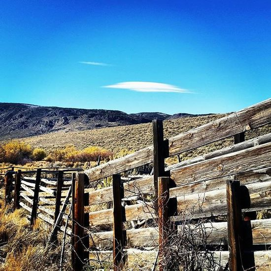 Nevada Nevadadesert Desertlove Explorenevada Realnevada Prettygoodtoday Todaywasagoodday Fallisintheair Life Humboltcountynevada Nationalpark Lovethedesert Desertlove Explorenevada Realnevada Life Happylife Beautifullandscape