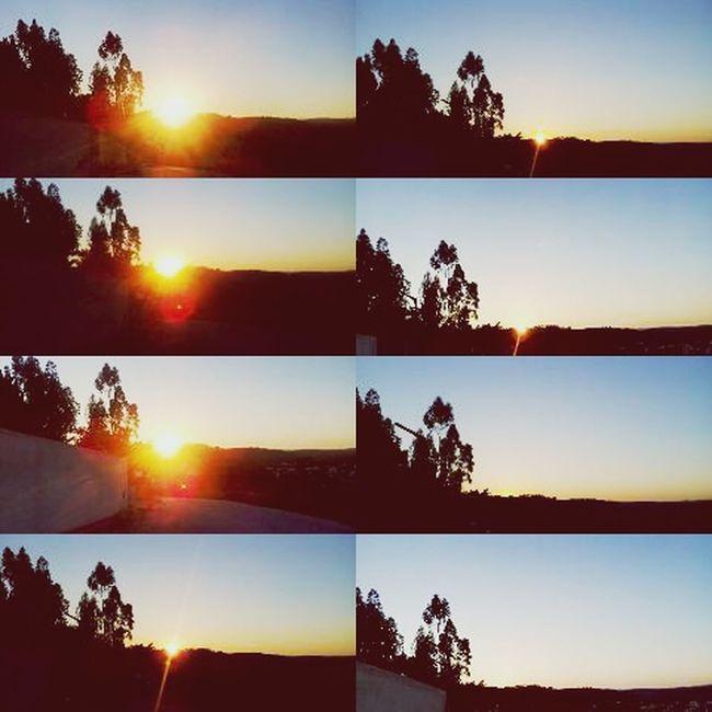 Sunshine s2
