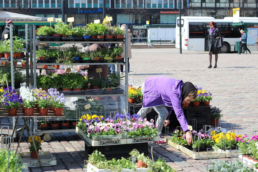 Pictures taken at Hakaniemi Market Hall, no editing, no touching. April 2016 Choice City Day FIN Finnish Spring Flower Flower Shop For Sale Freshness Hakaniemen Kauppahalli Hakaniemi Hakaniemi Market Hall Hakaniemi Tori Helsinki Lifestyles Market Market Stall Outdoors Plant Retail  Upclose Street Photography Small Business Spring Flowers Variation