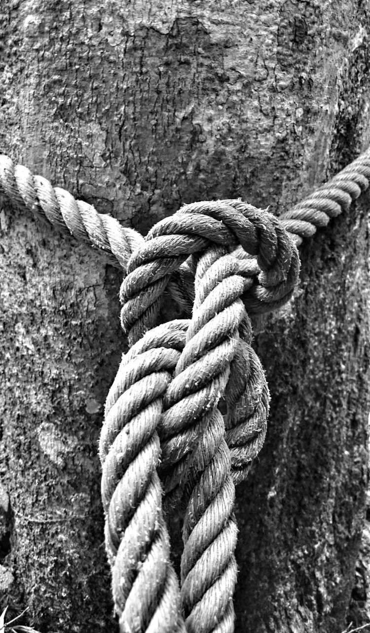 rope, strength, twisted, durability, close-up, textured, tied up, tied knot, no people, outdoors, day, braided, thick
