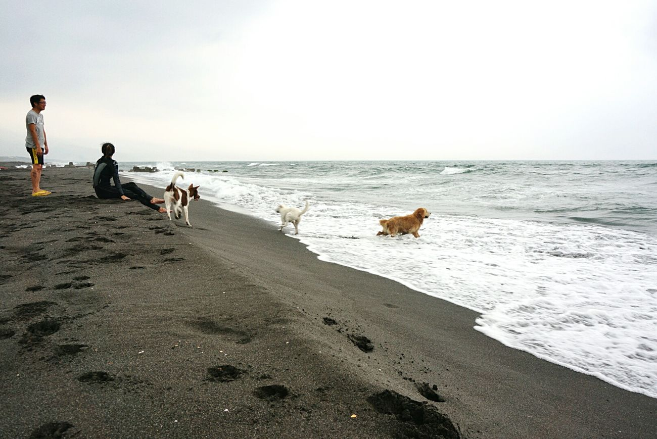 Pacific Ocean Enjoying Life Relaxing Dogs Yilan, Taiwan Hanging Out Check This Out Taking Photos Where Are You Going? Hello World