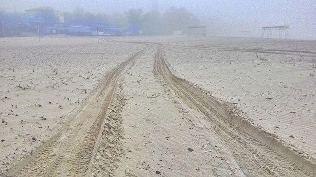 Beach Road Mist Landscape