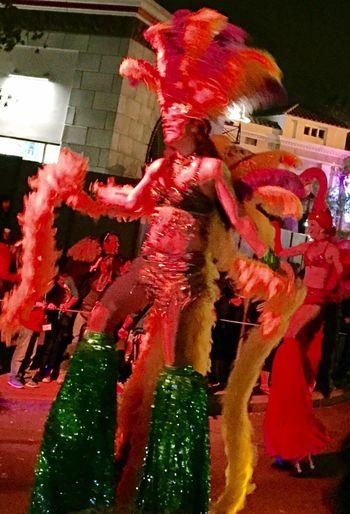 Mardi Gras Parade Colorful Dancing Happy People Costumes Celebration
