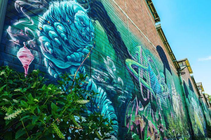 Bordeaux Art Streetphotography Streetart Graffiti Tag Paint Wallgrafitti Darwin Colors