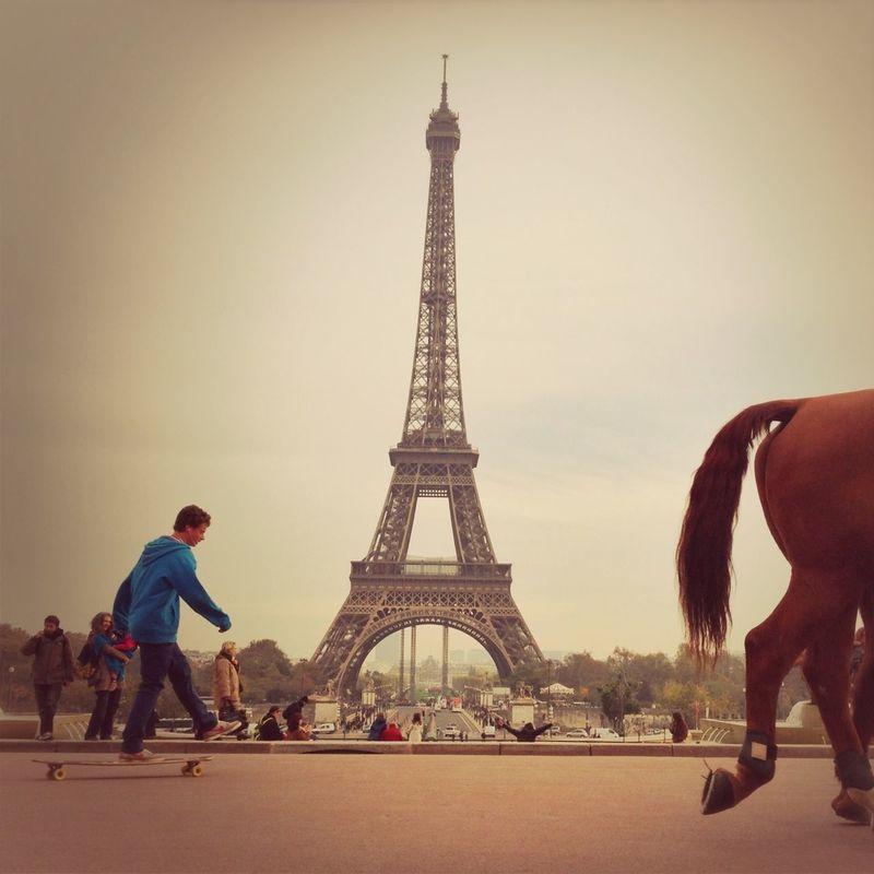horse by Hervé Bois