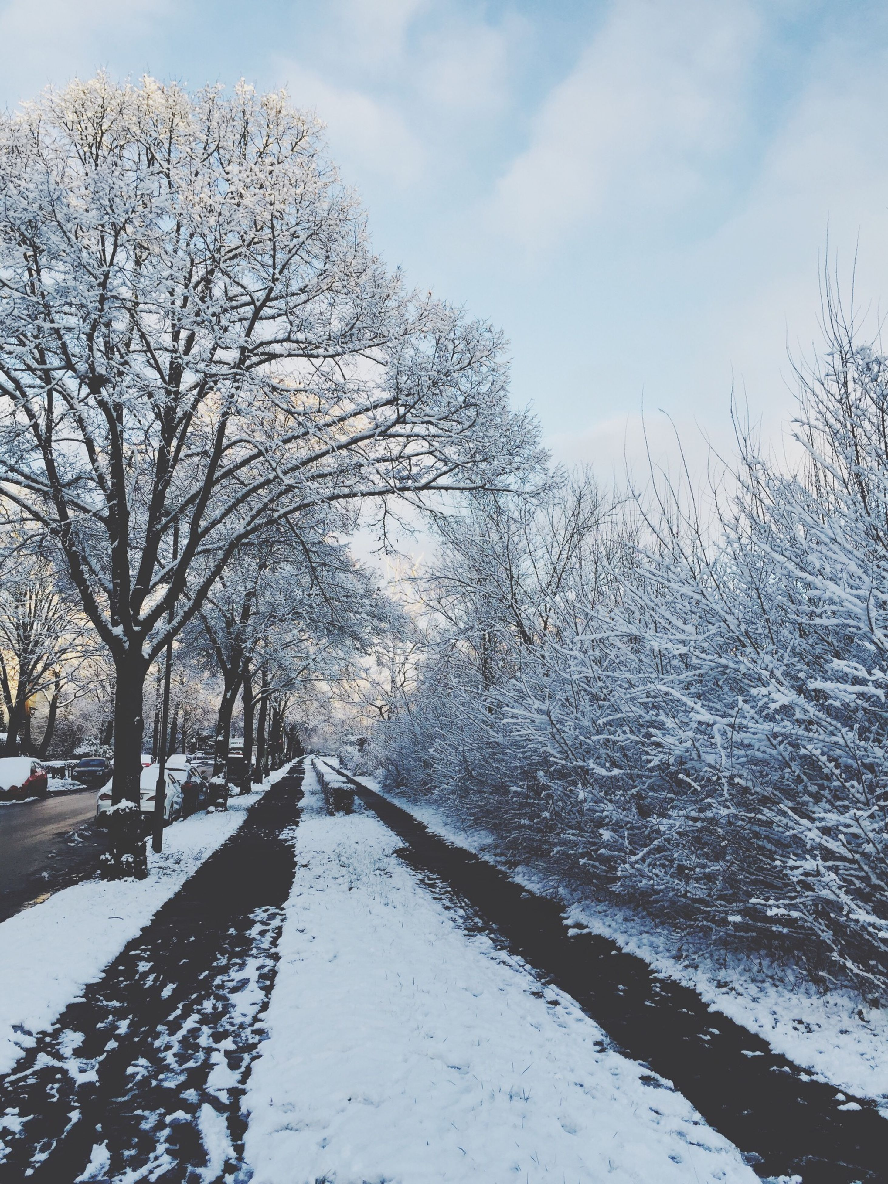 bare tree, winter, snow, cold temperature, tree, tranquility, sky, tranquil scene, season, the way forward, nature, scenics, beauty in nature, weather, branch, landscape, water, diminishing perspective, non-urban scene, frozen