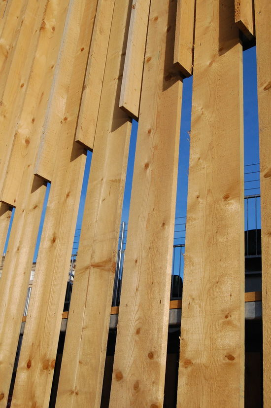 Wooden structure Abstract Abstract Nature Close-up Structure Structures & Lines Structures And Architecture Wall Wood