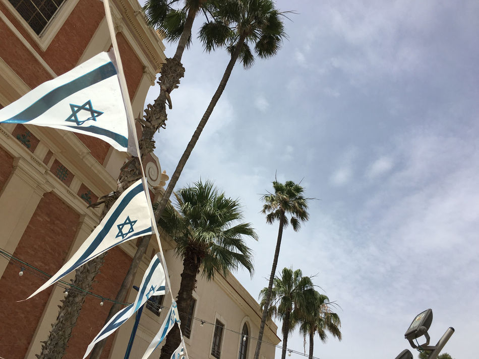 Built Structure Cloud - Sky Flag Israeli Flag Low Angle View No People Outdoors Palm Tree