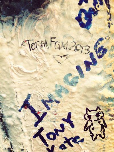Torm Fam 2013