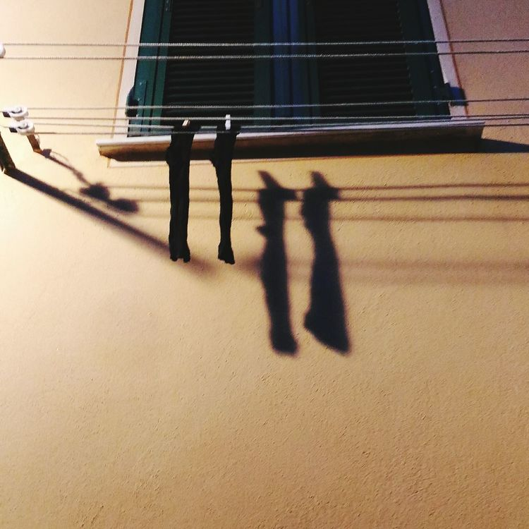 Sockets Shadows & Lights By Night Calze Luci E Ombre