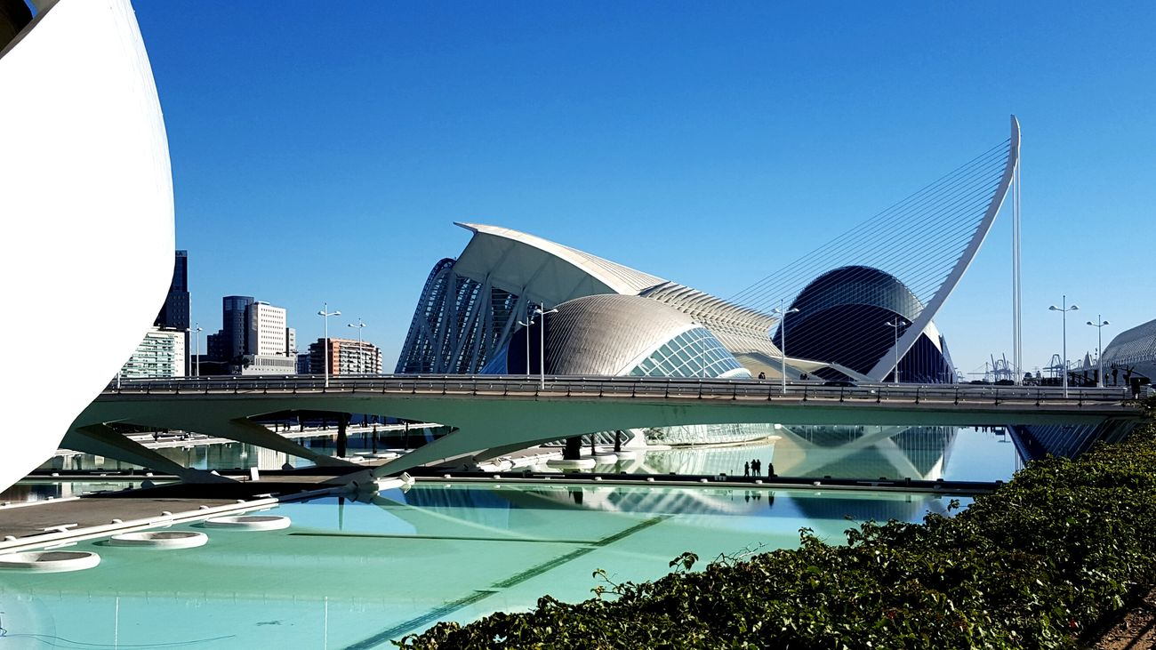 Adapted To The City Travel Destinations City Travel Architecture Arts Culture And Entertainment Bridge - Man Made Structure Sky Cityscape Modern Outdoors Blue Water Day Scenics Oceanographic Oceanographic Valencia Low Angle View Building Exterior Built Structure Greatness In Nature Beauty In Nature Oceanografico Valencia Valencia, Spain Great Day