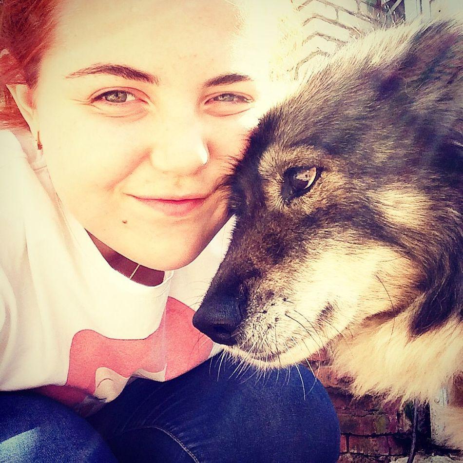 Человек собаке друг... Для человека животное это еще одна страничка в жизни, а для них мы сама жизнь? люблю свою собаку хорошо в деревне летом у бабули кострово
