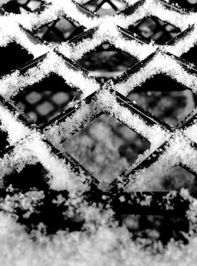 Milk Crates Fresh Snow