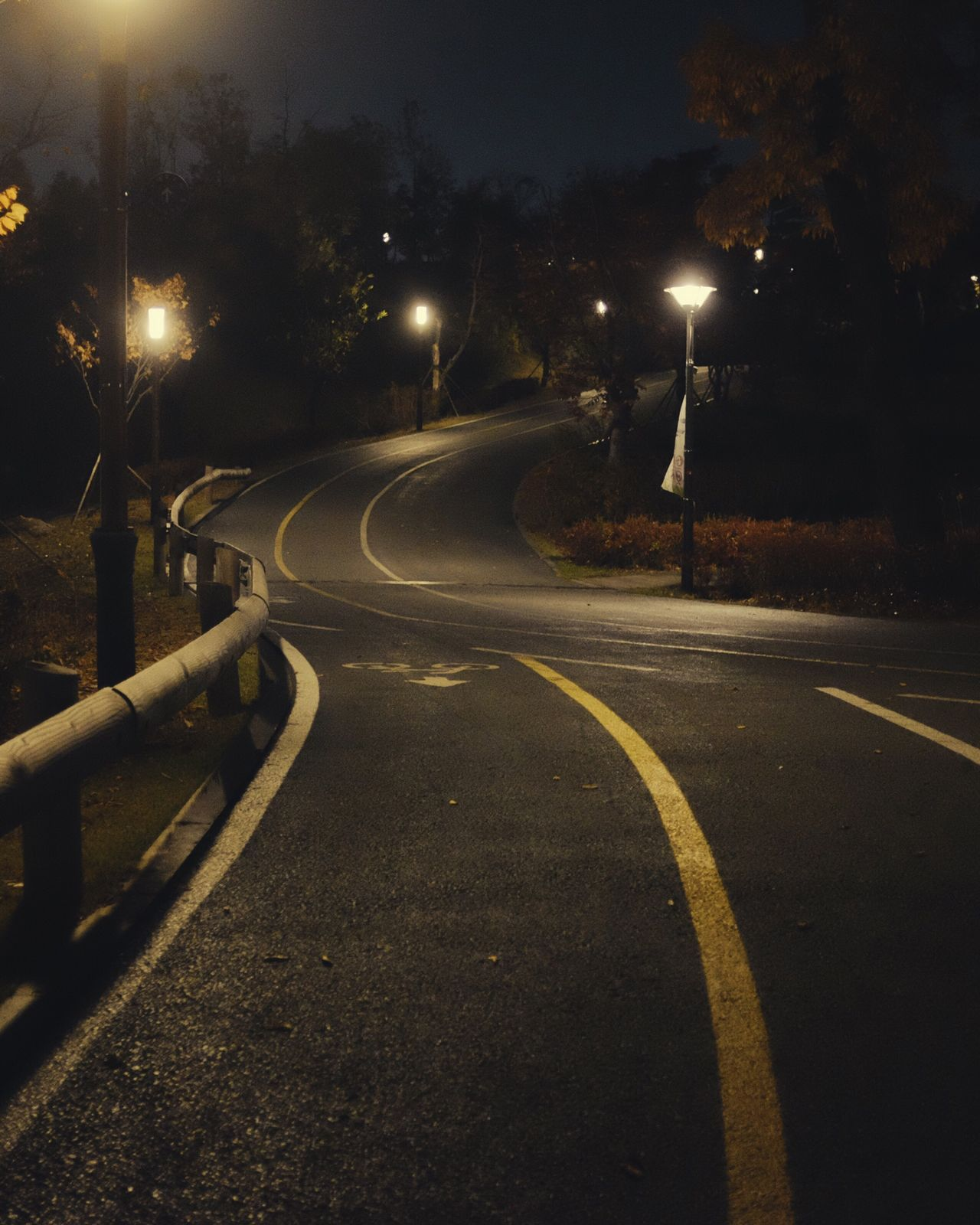 Night Illuminated Street Light Road Transportation No People The Way Forward Outdoors Fujifilm Fuji Fujifilm_xseries X100S FujiX100S Fujifilmx100s Korea Fall NightRoad Autumn Autumn Colors My Year My View Capture Berlin TakeoverMusic Waiting Game Road Korea Photos