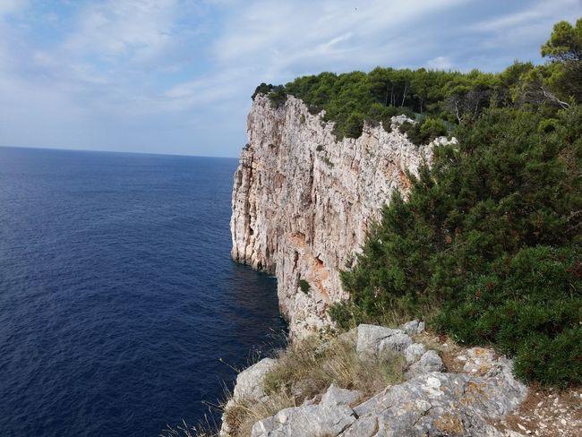 Nature Sea Blue Sea Horizon Over Water Cape  Endoftheworld Forest Sky Essence Of Summer
