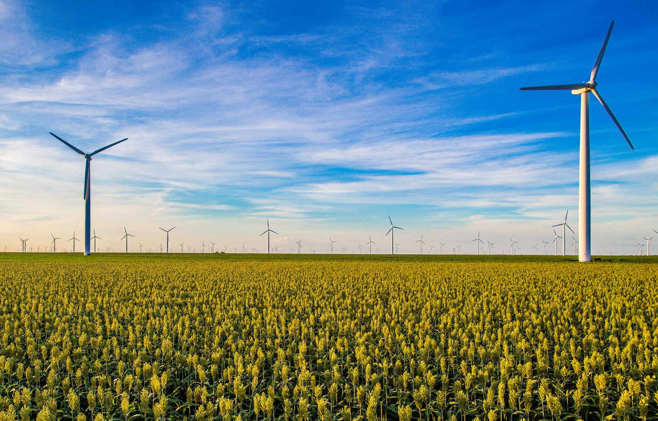 Agriculture Alternative Energy Beauty In Nature Blue Day Environmental Conservation Field Fuel And Power Generation Landscape Nature Renewable Energy Rural Scene Scenics Springtime The Color Of Technology Tranquil Scene Wind Power Wind Turbine Windmill Yellow TakeoverContrast