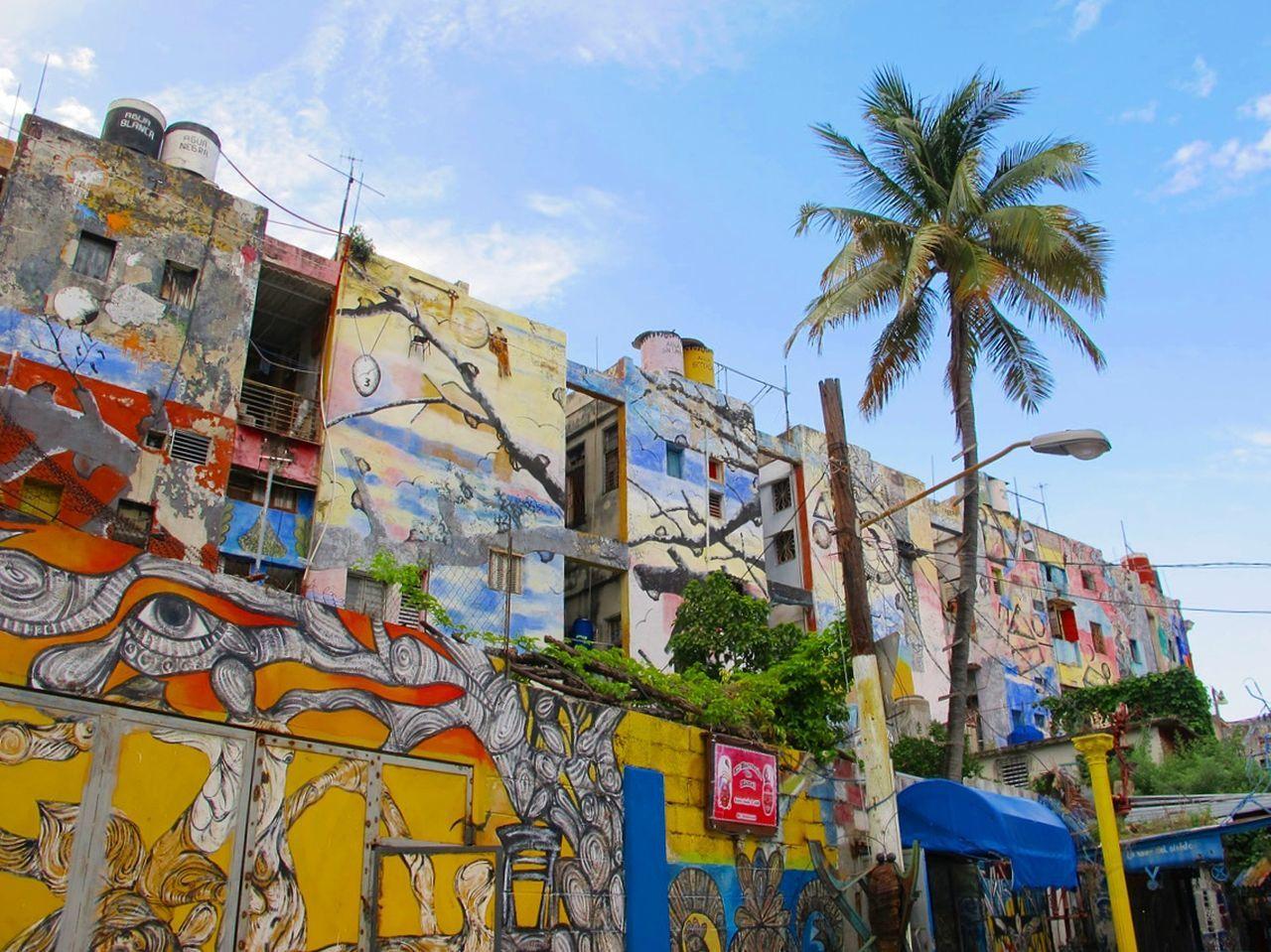 Original Experiences Walls Colorful Showcase June