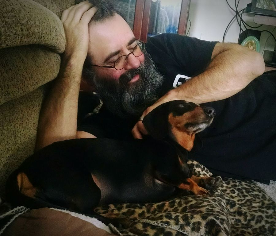 Spoilings Pampered Pets Loyalty Relaxation Togetherness Abagail <3 Doxie Love Pet Photography  Taking Photos Dog❤ Doxie Moxie Happiness Fur Angel Pet Photography  Hot Dog