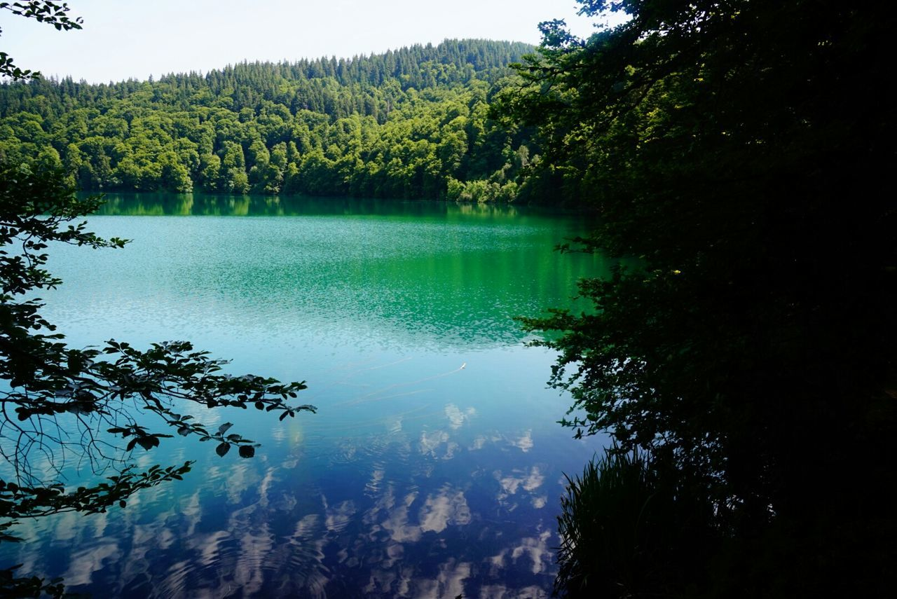 Volcanoes Lake View Auvergne Weekend Sunny Day France Lac Pavin Water Reflections Summer Waterscape Iloveauvergne