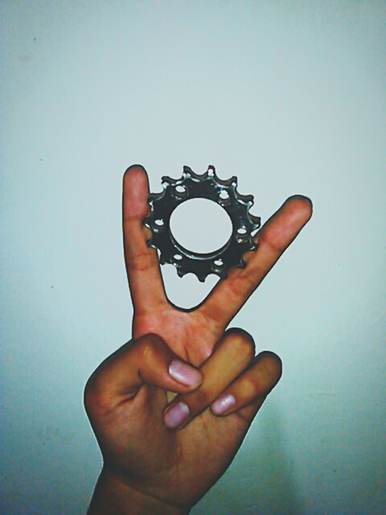 Cog15t Fixedgear