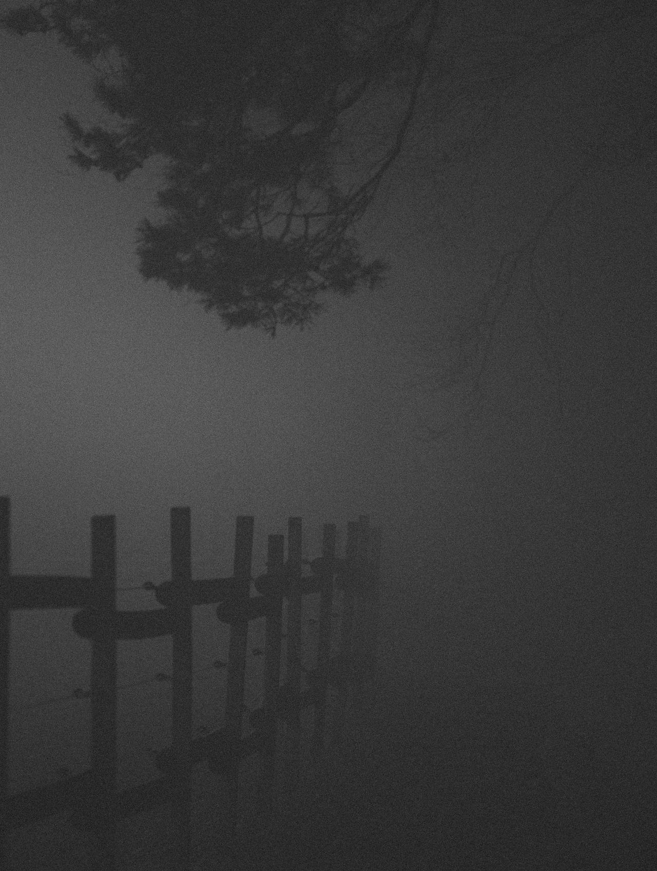 Black & White Black And White Black And White Photography Branch Countryside Dark Dark Photography Darkness Fence Fog Foggy Grass Hazy  Memorial Minimal Minimalism Minimalobsession Mist Nature Night Photography Night View Nightshot Outdoors Rural Tree