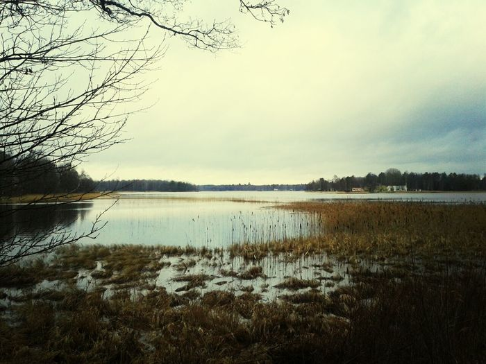 Landscpape Sweden Winter Landscape Lake View