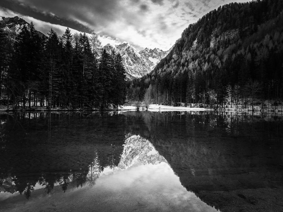EyeEm Best Shots Exceptional Photographs EyeEm Selects Eyeemphotography EyeEm Masterclass My Point Of View EyeEmBestPics Eye4photography  Cold Temperature Winter Bnw Bnw_friday_eyeemchallenge Blackandwhite Black And White Monochrome Photography Landscape Cloud - Sky Reflection Water Lake Mountain Tree Sky Outdoors Snow Nature No People Beauty In Nature Scenics Day