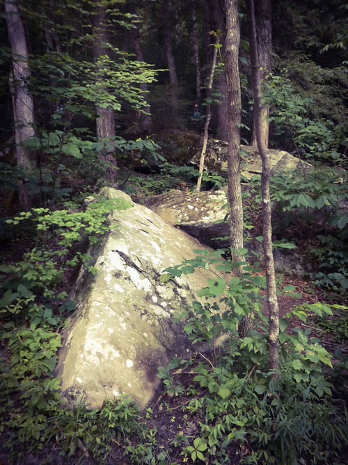 Feel The Journey Boulders Cumberland Falls Corbin Kentucky Nature Trees Trees And Rocks Step Stones Ascending