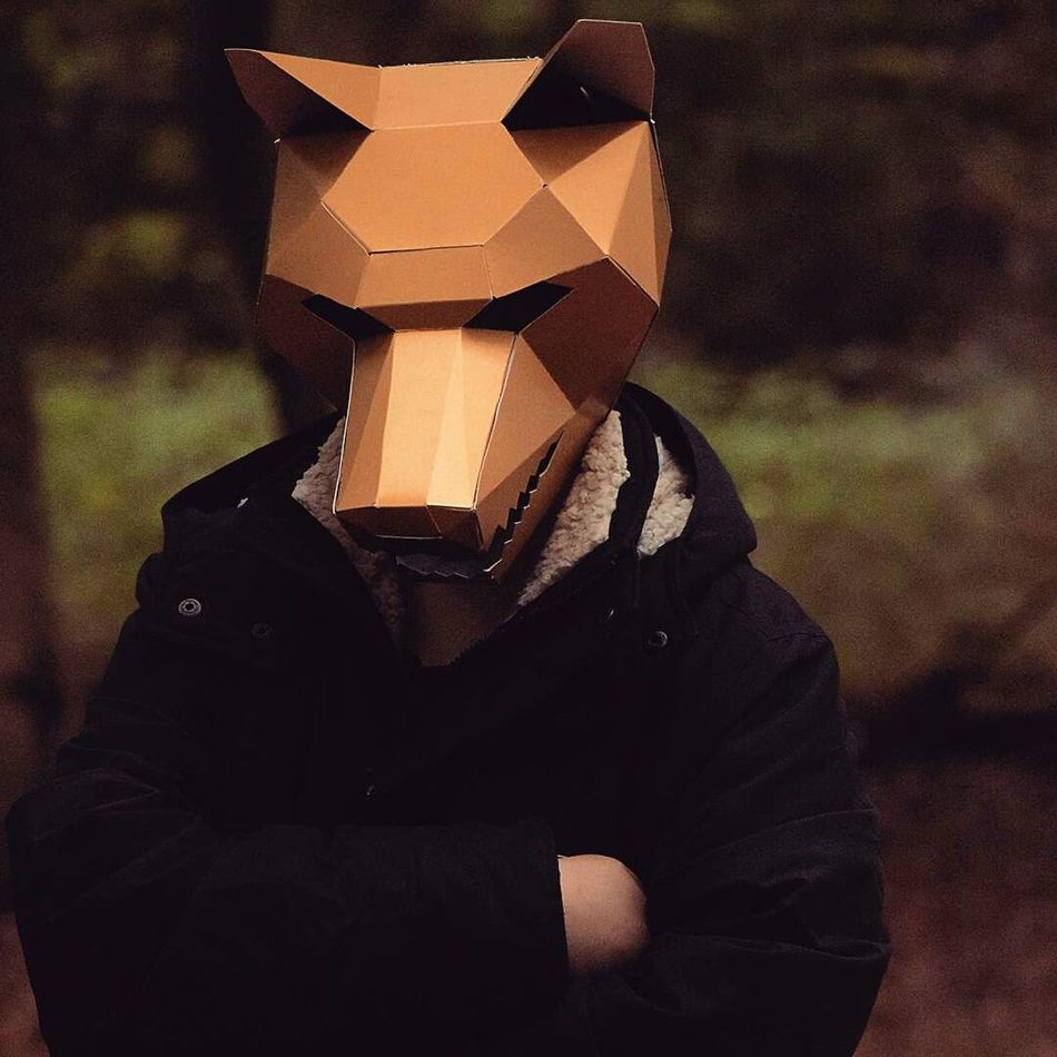 Paper Person Outdoors Papercraft Geometric Mask Animal Wolf Mask Wolf Paper Mask Minimalistic Anonymous ArtWork Arts Craft Woods Forrest