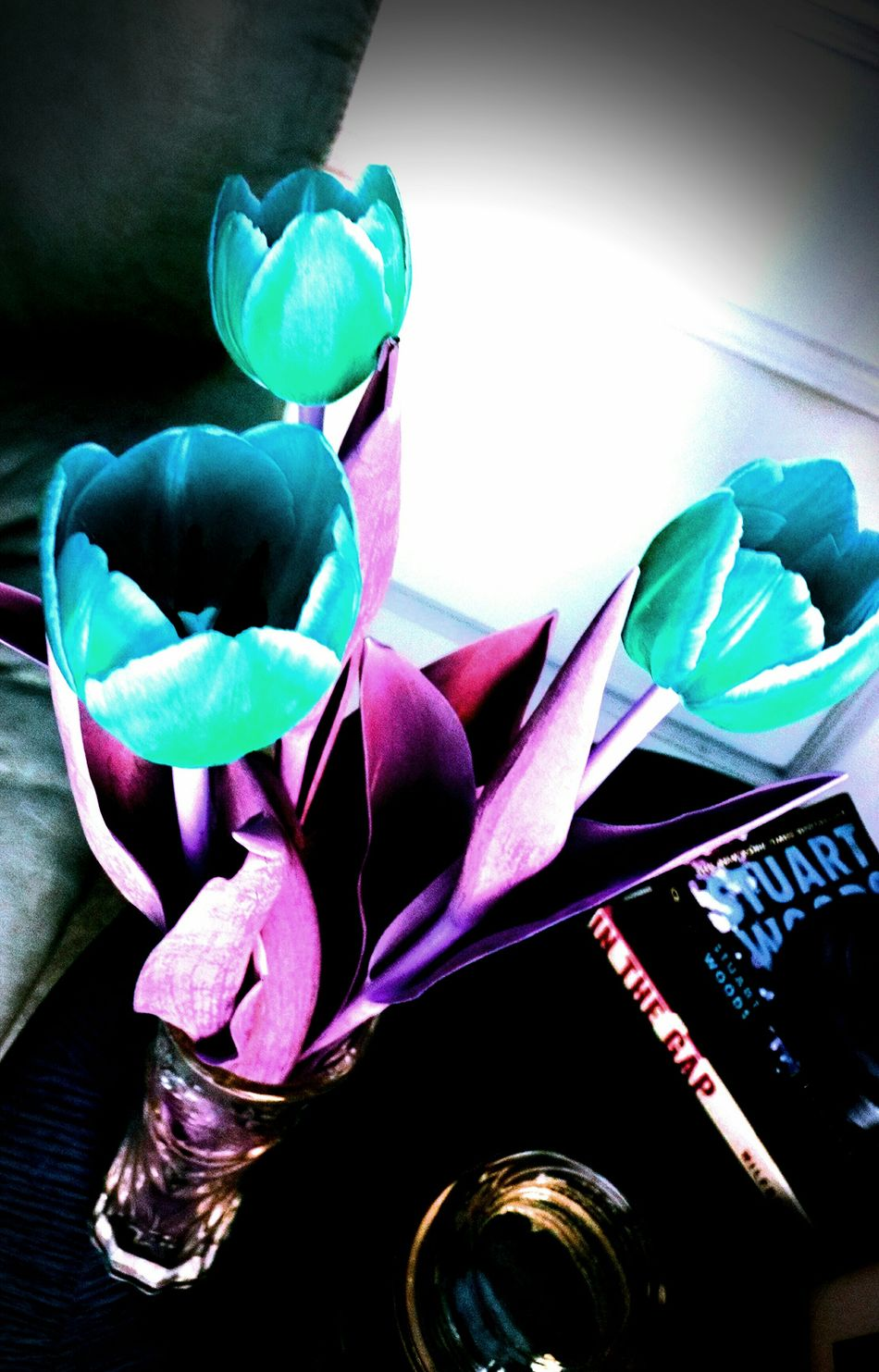 What if every color was changed? Colors Blue Purple Colorful Edited Switched Colors Switched Blue And Purple Purple And Blue Vibrant Colors Vibrant Colours Colour Color Colourful Tulip Tulips Flower Flowers