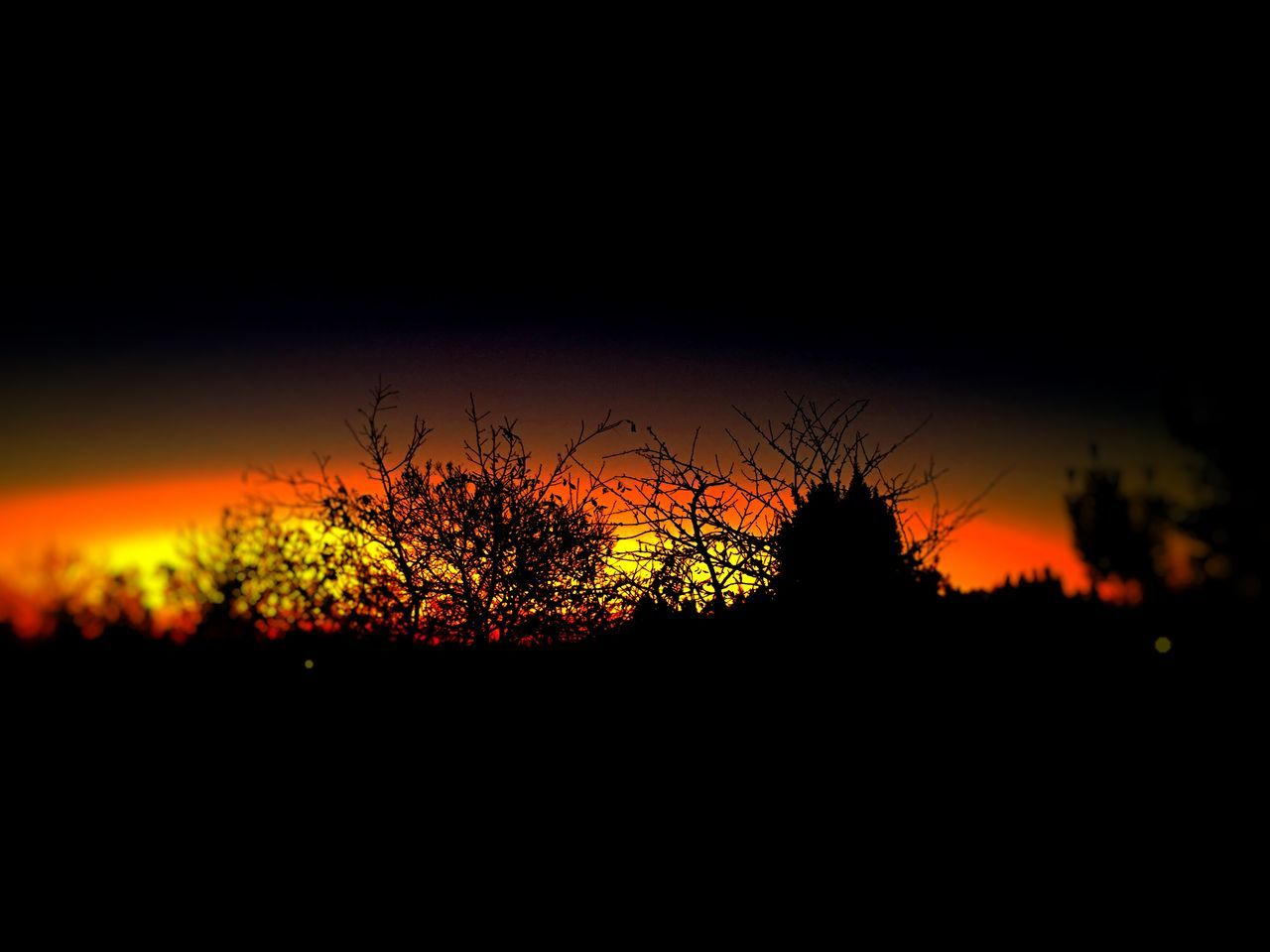 sunset, silhouette, beauty in nature, nature, orange color, tranquil scene, scenics, tranquility, tree, dark, outdoors, landscape, no people, night, growth, sky