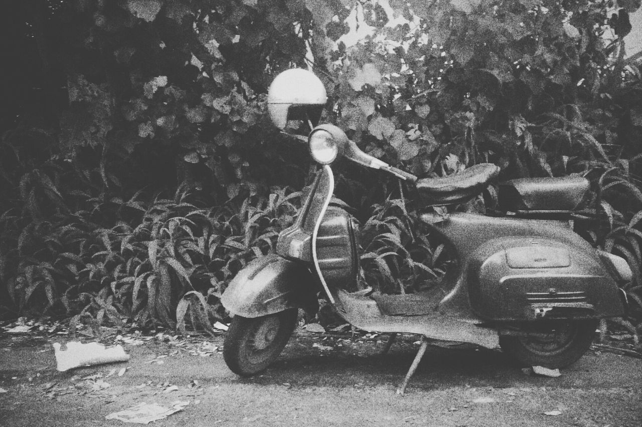 Vintage ScooterGang Transportation Roadside Old-fashioned Outdoors Loneliness First Eyeem Photo