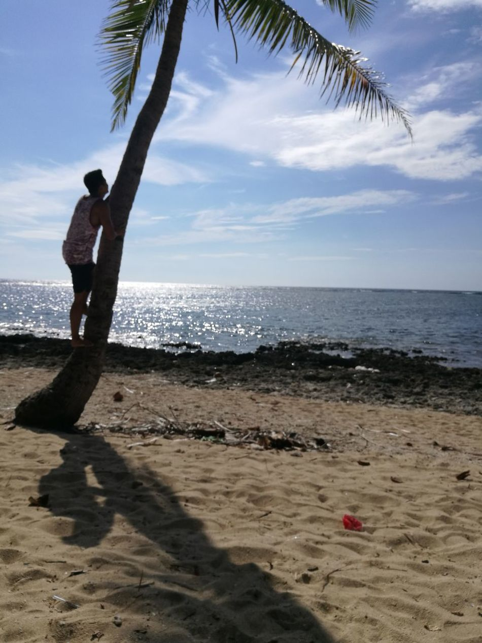 Beach Sand Sea One Man Only Palm Tree One Person Horizon Over Water Only Men Sky Vacations Nature Silhouette Tree Scenics Water Tranquility
