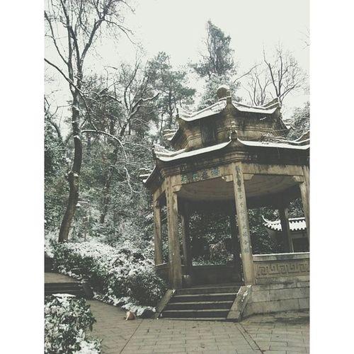 岳麓山 长沙初雪 长沙 Changsha vsco vscocam hunan snow