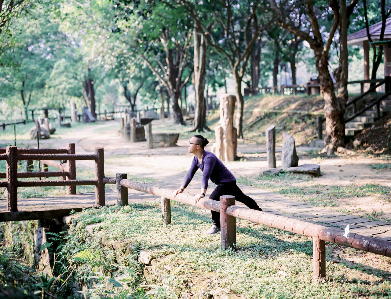 Alone Autum Swinger Day Escapism Fence Field Forest Getting Away From It All Grass Grassy Green Color Hanging Out Landscape Portrait Railing Togetherness Tree Tree Trunk Weekend Activities Wood Wood - Material Wooden WoodLand Yama