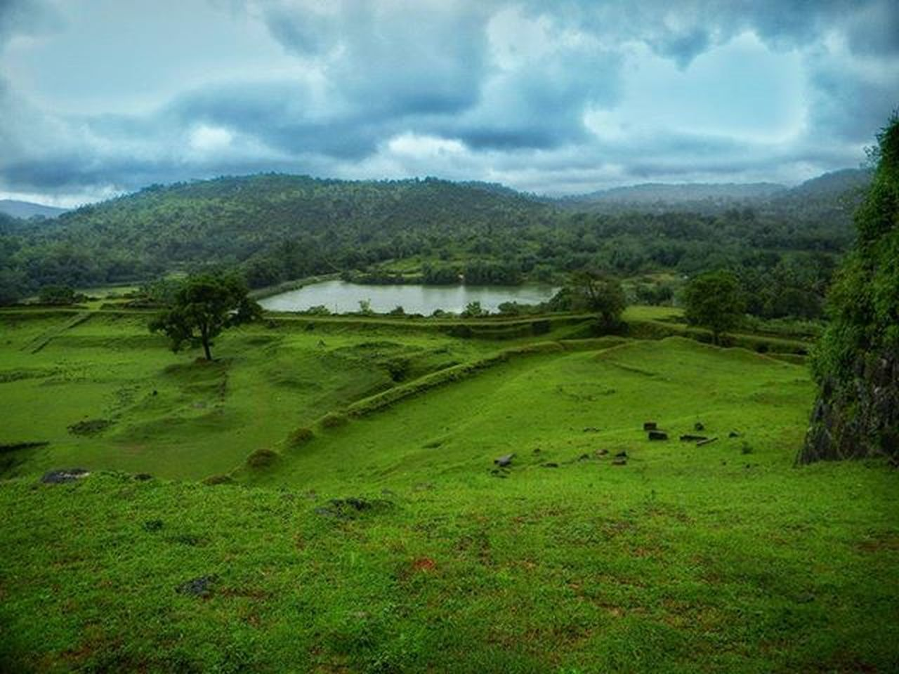 landscape, green color, mountain, nature, field, grass, outdoors, tree, forest, agriculture, no people, scenics, rural scene, cloud - sky, beauty in nature, day, sky