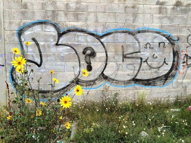 Sonrisas y flores EyeEm Best Shots Graffiti EyeEm Nature Lover Flower Porn Streetart Streetart/graffiti