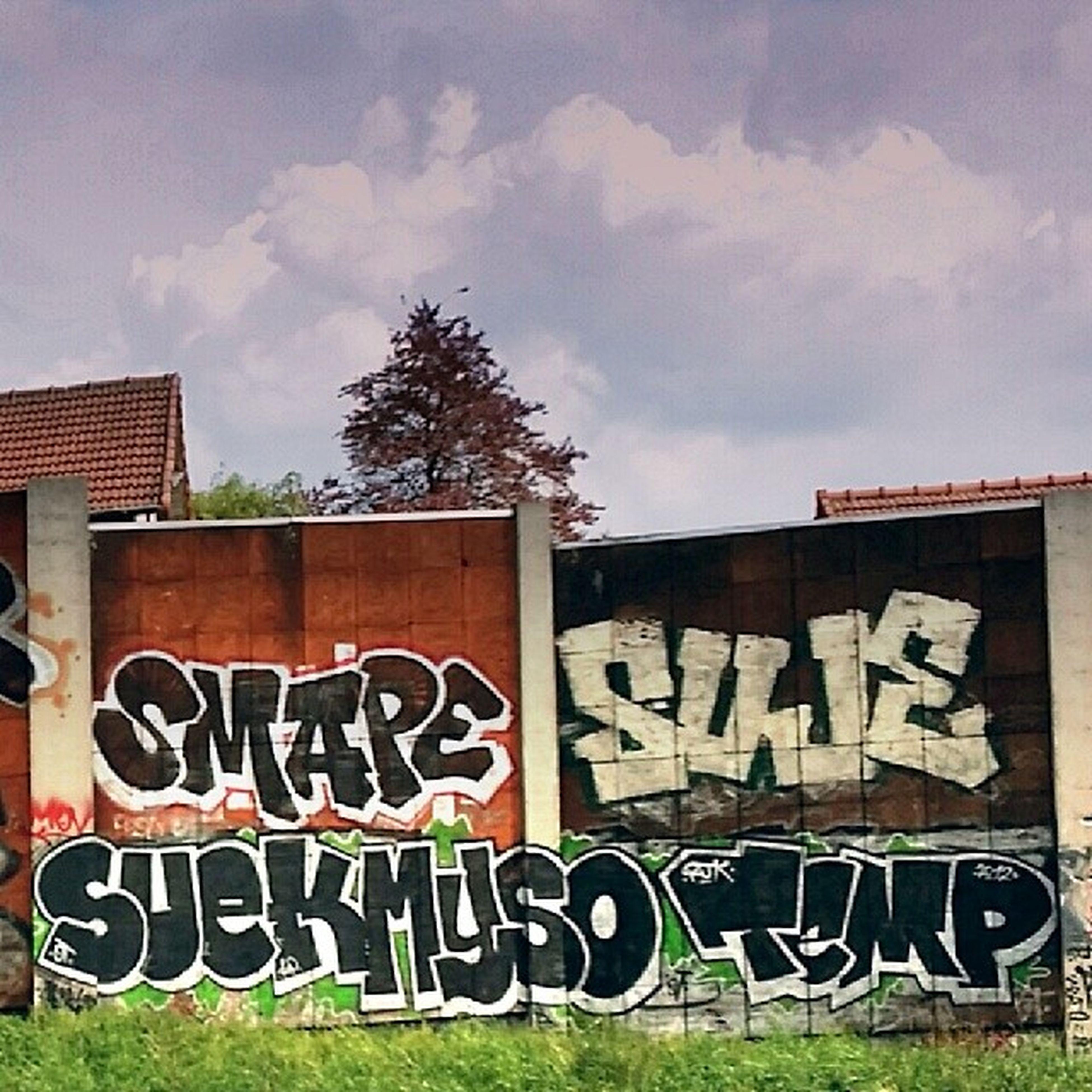 Temp Myso Suek Mape Suje A6 Streetart Tag Graf