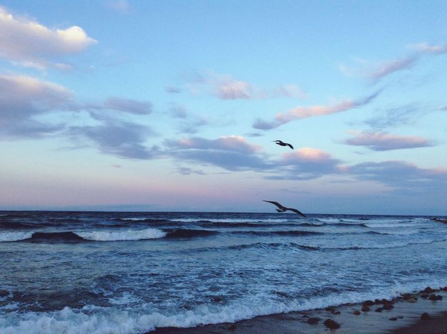Freedom SetFree Ocean Summer Summer2014 Hamptons Montauk Beach Dusk Mytravels
