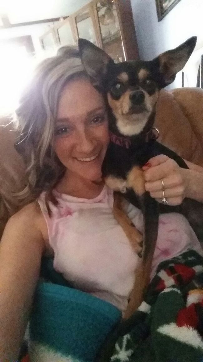My Princess Nilla Bug Chippin Chihuahua Miniature Pinscher Princess